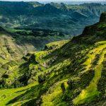 Ethiopia farms